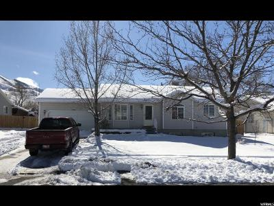 Tooele UT Single Family Home For Sale: $229,900