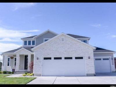 Lehi Single Family Home For Sale: 1619 W Timp Meadows Dr
