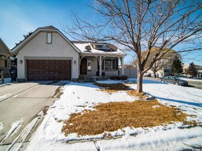 Saratoga Springs Single Family Home For Sale: 39 W Lake View Terrace Rd