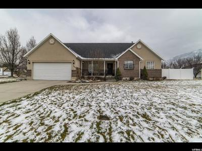 Springville Single Family Home For Sale: 1089 S Wildflower Way