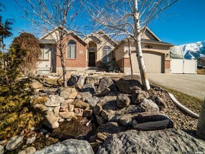 Salem Single Family Home For Sale: 933 S 225 E