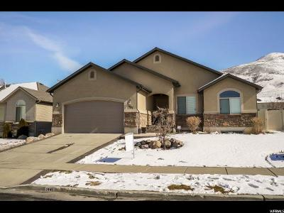 Perry Single Family Home For Sale: 1441 S 25 E