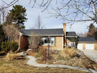 Provo Single Family Home For Sale: 515 E 2950 N