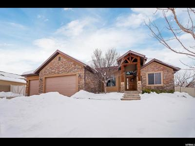 Santaquin Single Family Home For Sale: 966 S Valley View Dr E