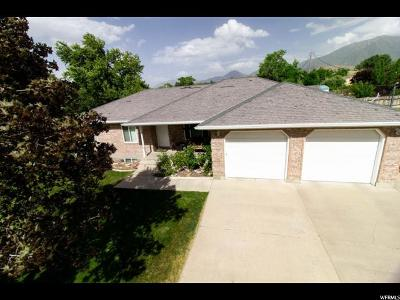Payson Single Family Home For Sale: 785 S 800 W