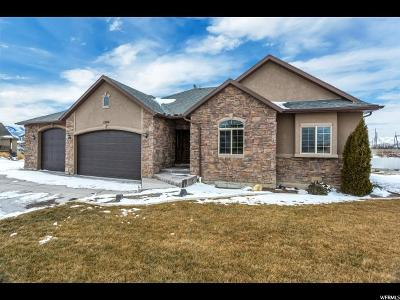 Lehi Single Family Home For Sale: 1390 S 825 W