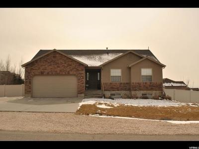 Willard Single Family Home For Sale: 885 W 7950 S