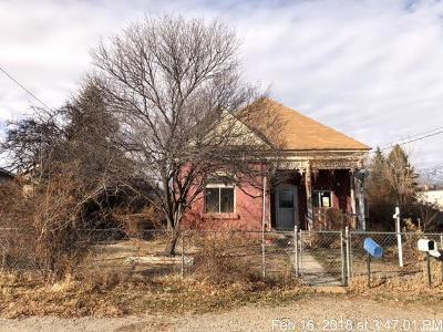 Lehi Single Family Home For Sale: 245 E 400 N