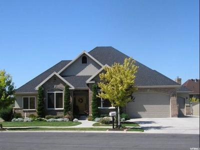 Provo Single Family Home For Sale: 1685 N 1590 W