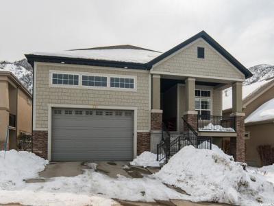 Draper Single Family Home For Sale: 1596 E Spyglass Hill Dr