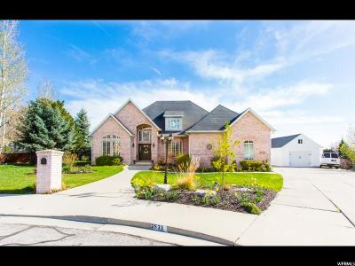 Provo Single Family Home For Sale: 2533 N 460 E