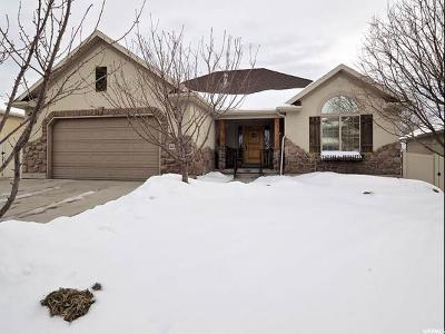 Taylorsville Single Family Home For Sale: 6407 S Andes Way W