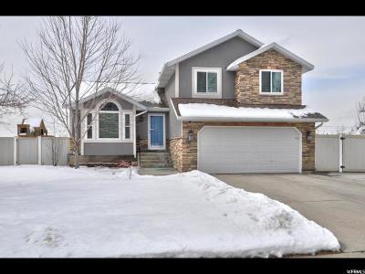 Sandy Single Family Home For Sale: 11322 S O Henry Rd E