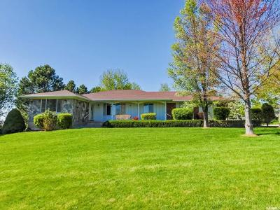 Kaysville Single Family Home For Sale: 561 E Mutton Hollow Rd