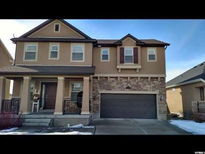 Kaysville Single Family Home For Sale: 1374 S Carriage Chase Dr. W