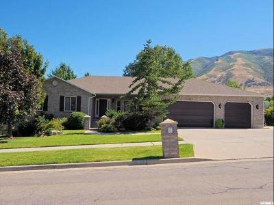 Draper Single Family Home For Sale: 13661 S Bridle Trail Rd