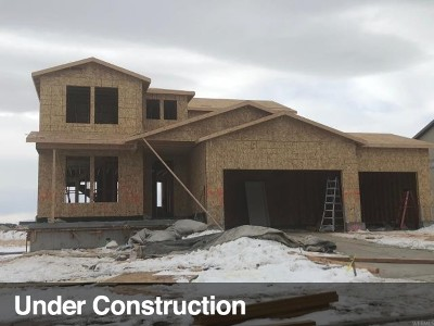West Jordan Single Family Home For Sale: 6731 W Oakridge Park Dr