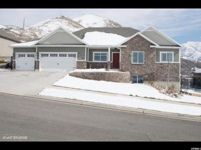 Springville Single Family Home For Sale: 511 S 2080 E