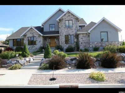 Spanish Fork Single Family Home For Sale: 832 S River Ridge Ln