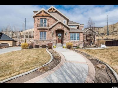 Orem Single Family Home For Sale: 1523 E 1110 N
