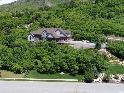Layton Single Family Home For Sale: 3203 E Fernwood Dr N