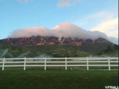 Provo Residential Lots & Land For Sale: 4980 N Canyon Rd