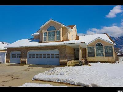 Sandy Single Family Home For Sale: 11131 S Prescott Park Cir