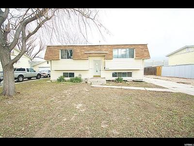 Midvale Single Family Home For Sale: 8205 S Ivy Dr W