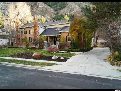 Sandy Single Family Home For Sale: 4048 E Canyon View Pl