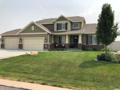 Grantsville Single Family Home For Sale: 608 E Coach Ln