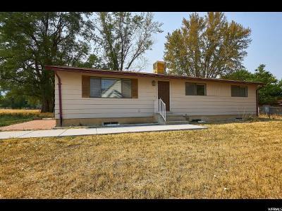 Draper Single Family Home For Sale: 13054 S 1300 St E