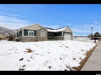 Pleasant Grove Single Family Home For Sale: 1116 N 170 E