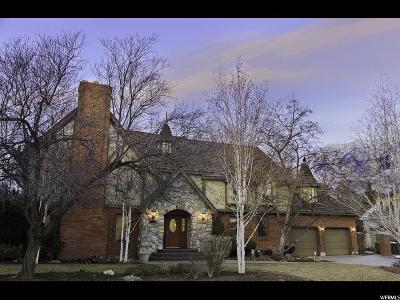 Orem Single Family Home For Sale: 1037 E 590 S