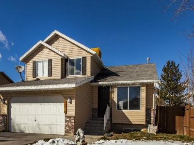 West Jordan Single Family Home For Sale: 5084 W Banquet Ave S