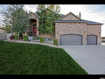West Jordan Single Family Home For Sale: 9036 S Coppering Ave W
