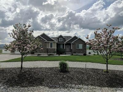 Weston Single Family Home For Sale: 4915 W Hwy 36 S