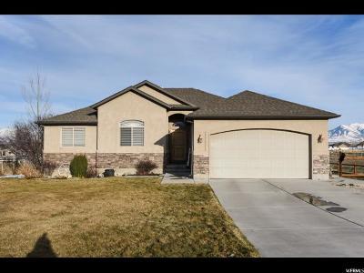 Grantsville Single Family Home For Sale: 543 S Hale St