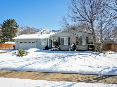 Sandy Single Family Home For Sale: 11753 S Hidden Valley Rd
