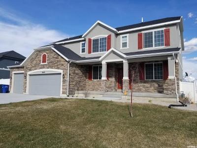 West Jordan Single Family Home For Sale: 8699 S Tintic Ln