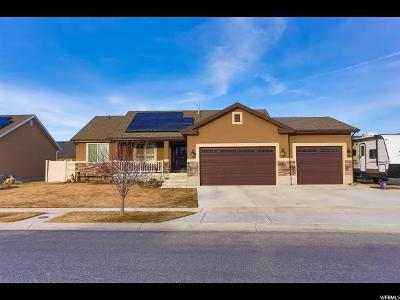 West Valley City Single Family Home For Sale: 2943 S Broad Creek Dr W
