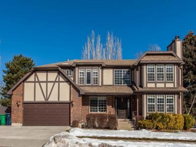 Sandy Single Family Home For Sale: 2229 Powderkeg Dr