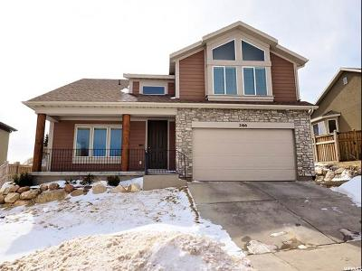 Draper Single Family Home For Sale: 2166 E Eagle Chase Dr S