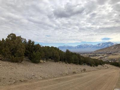 Herriman Residential Lots & Land For Sale: 14902 S Shaggy Mtn