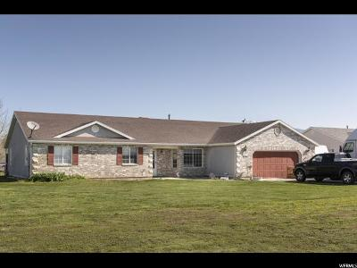 Ogden Single Family Home For Sale: 4654 W 1150 S
