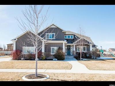 Draper Single Family Home For Sale: 12022 S Draper Ridge Dr