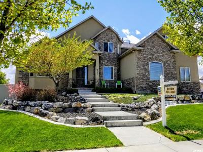 Herriman Single Family Home For Sale: 6277 W Freedom Hill Way