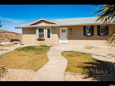 St. George Single Family Home For Sale: 2981 S S Blueberry Cir