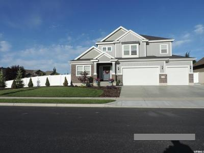 South Jordan Single Family Home For Sale: 11244 S Copper Point Way