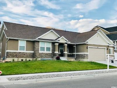 Lehi Single Family Home For Sale: 826 Spring Dew Ln