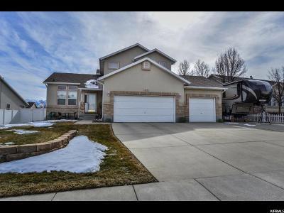 South Jordan Single Family Home For Sale: 9573 Skye Park Rd